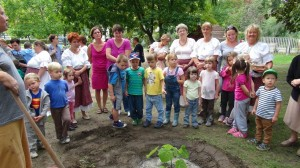 Smaragdfa® ültetés a csepeli Kádár Óvodában_2014