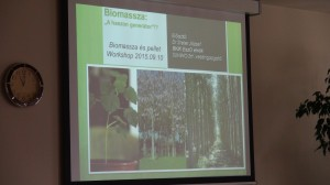 12_biomassza